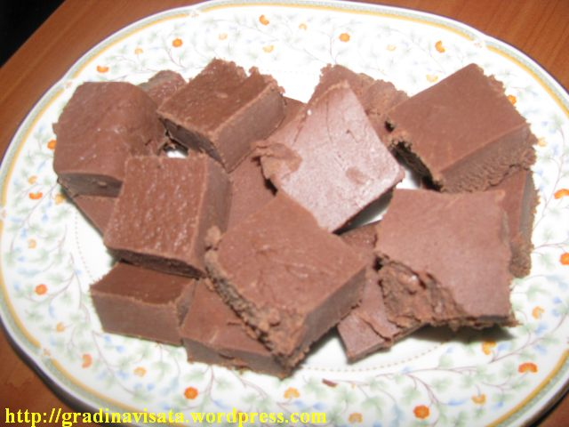 Ciocolata de casa gradina visata for Ciocolata de casa reteta clasica